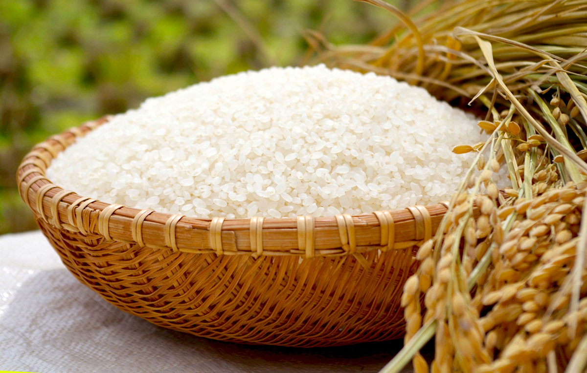 Do You Miss Japanese Rice Omotenashi Japan
