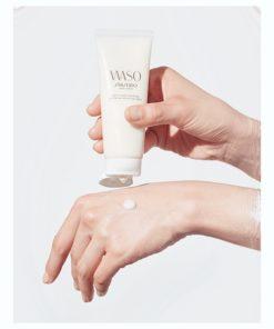 waso-polisher2